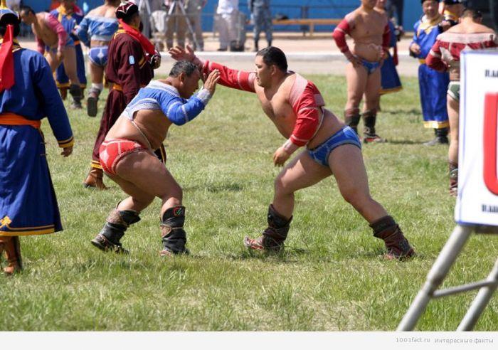 Огромное количество турниров проводится по всей монголии чуть ли не ежедневно.