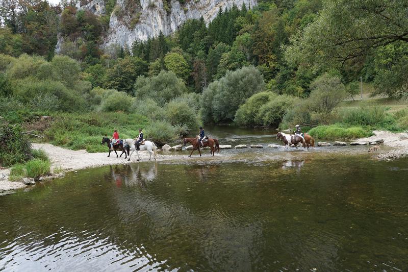 canva-horses,-danube,-water,-ride,-sport,-cross-MACVctKyadY