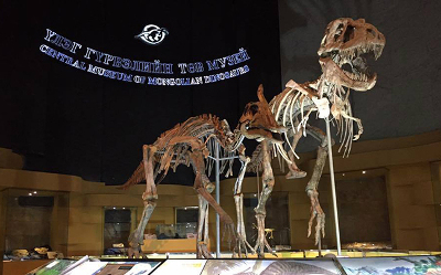 New dinosaur exhibition with 3D models