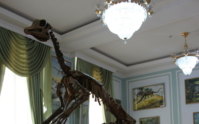 geology museum in Tashkent