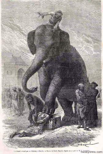 12-elephant-1