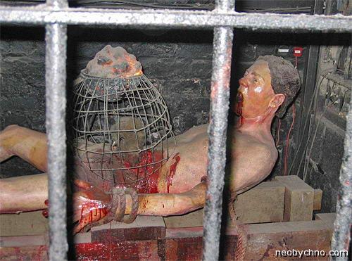 09-rat-torture