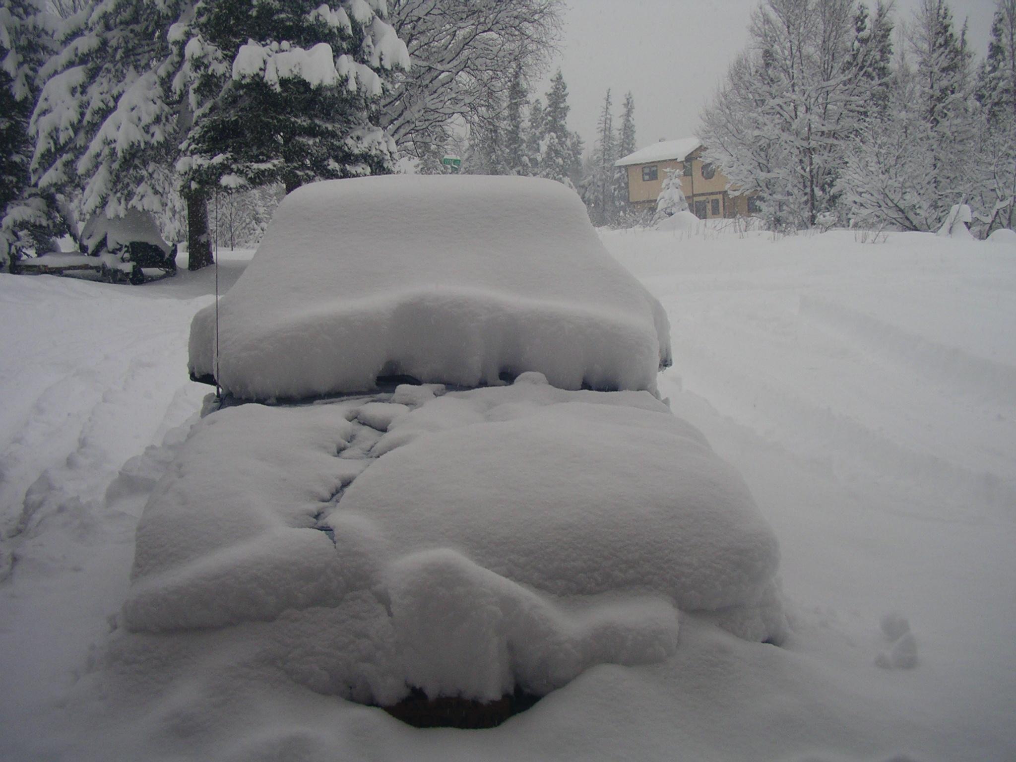 Вот столько снега выпадало в Анкоридже, Аляска.