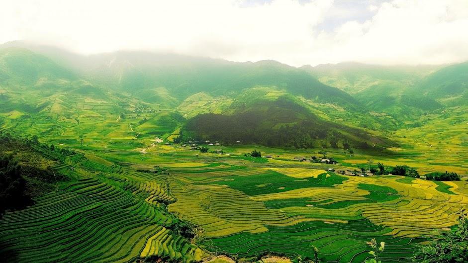 aerial-green-landscape-wallpaper-12896-13347-hd-wallpapers