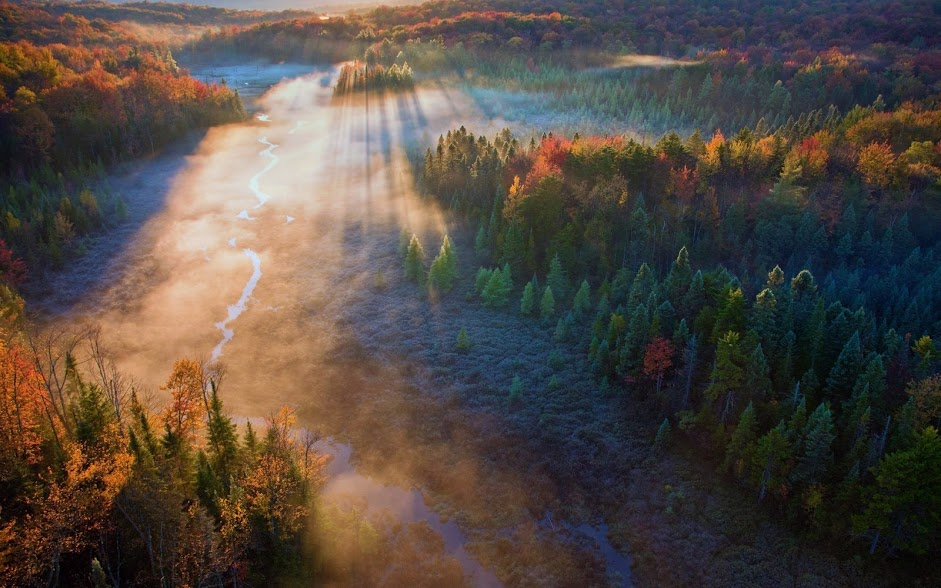 210067-forest-mist-sunrise-trees-field-river-sun_rays-fall-aerial_view-nature-landscape
