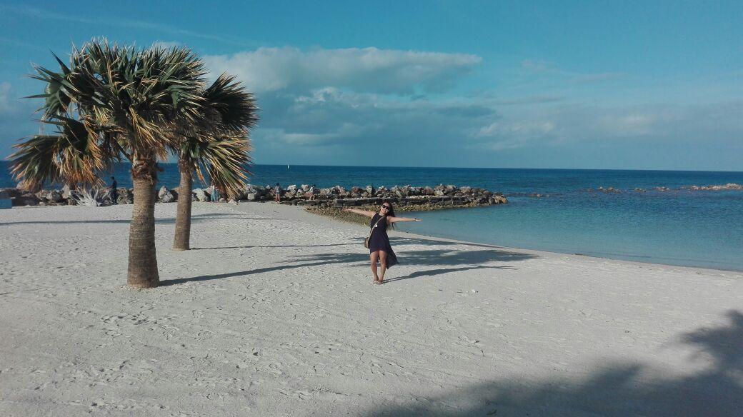 Бермудский остров2