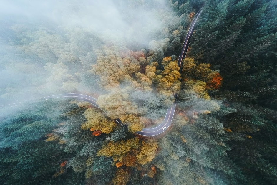 275918-landscape-nature-Oregon-forest-road-highway-fall-mist-drone-aerial_view-trees