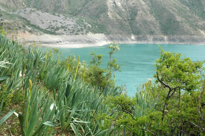 Озеро Кара-Суу, Кыргызстан (13)