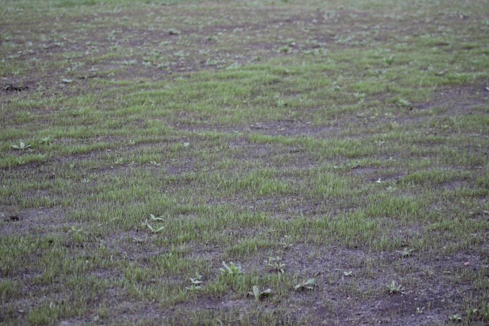 http://static.akipress.org/127/.storage/sport/images/futbol/Sbornaya-KP/ChM-2018/Remont_stadiona/30_marta/0ccf9507e4226c771a74684d81ada3b5.JPG