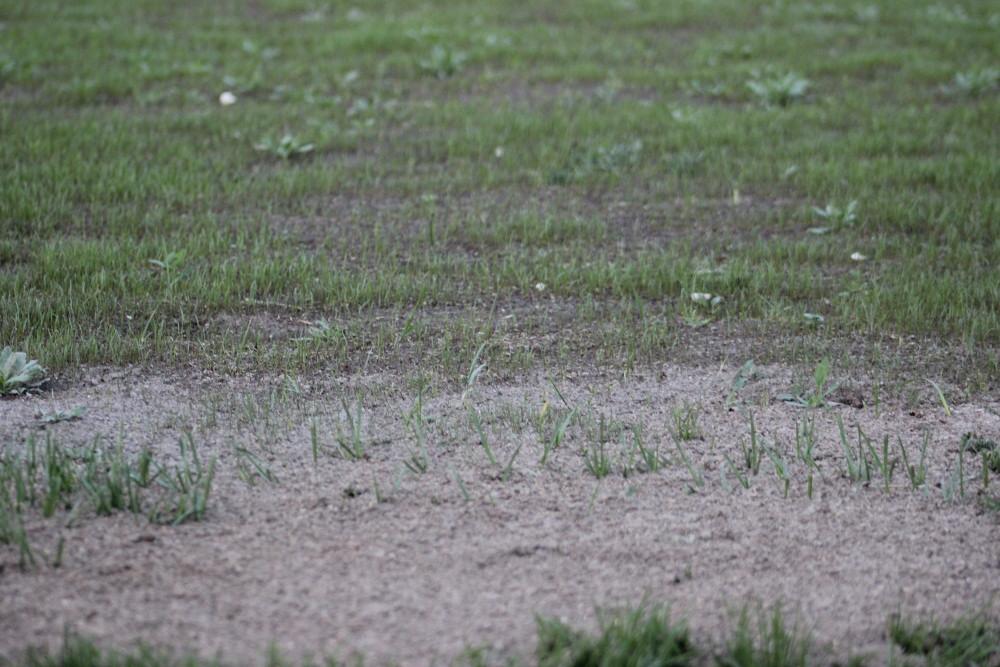 http://static.akipress.org/127/.storage/sport/images/futbol/Sbornaya-KP/ChM-2018/Remont_stadiona/30_marta/15489714467c01a178ff43ea60157df6.JPG