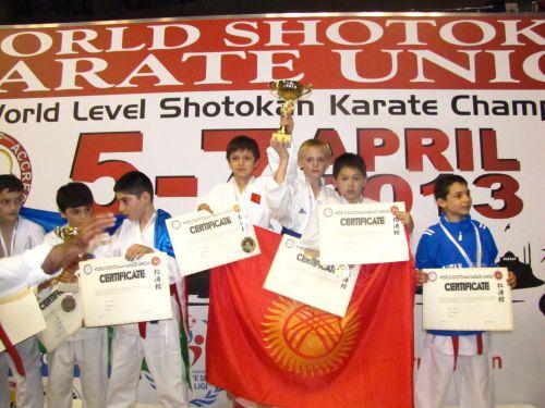 Aghayev vs dona ko / (knock out) open de paris 2016 kumite peleas