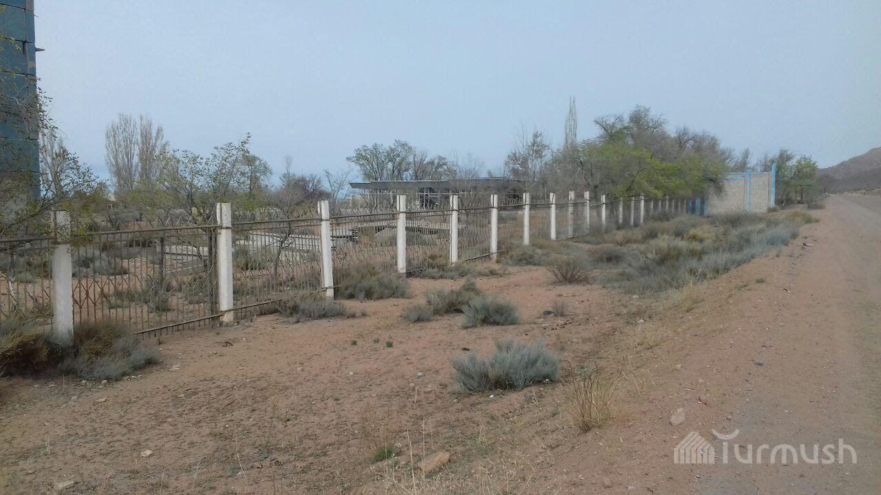 Фото узбекистанских писек 5 фотография