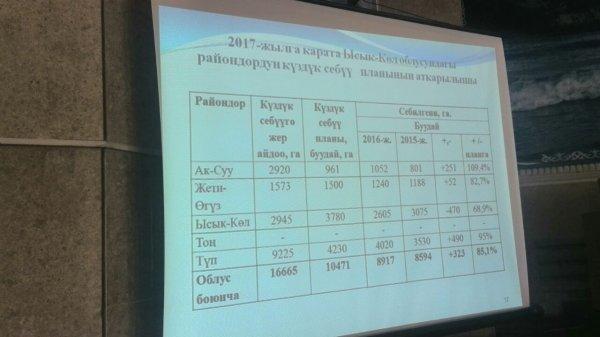 ВКрыму хотят посеять 437 тыс. гаозимых зерновых