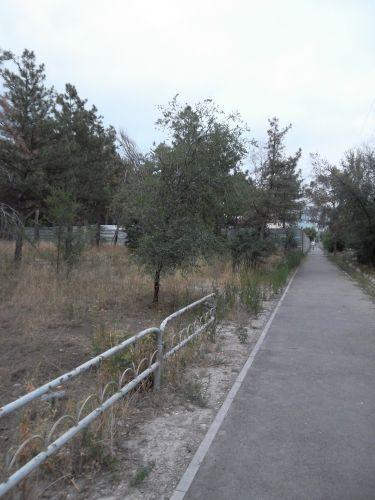 SAM_1489