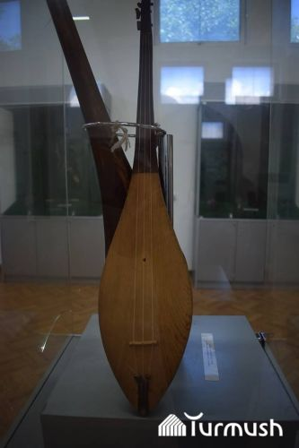 Т.Сатылганов чапкан комуз