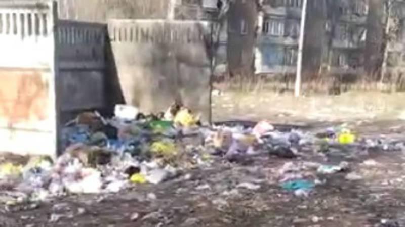 На ул.Добровольского в селе Беловодское нет мусорных баков, жители выбрасывают мусор во двор. Видео