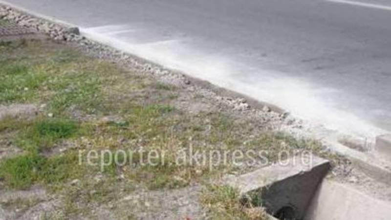 Бишкекчанин оштрафован за то, что сломал бордюры на ул.Тоголок Молдо