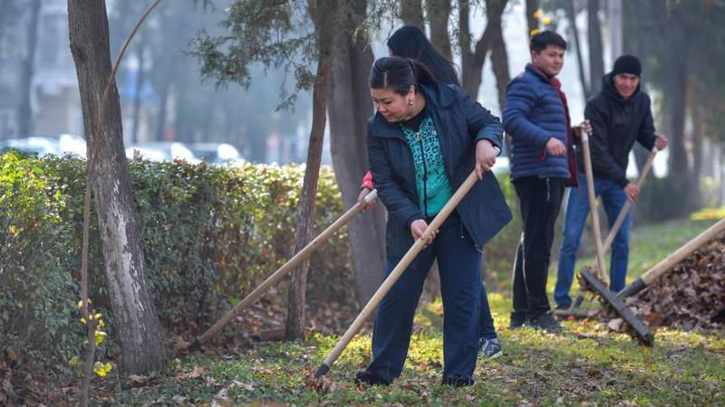 Бишкекчанин предлагает «Бишкекзеленхозу» убирать опавшие листья весной, а не осенью