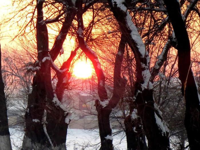 Картинки по запросу  зимний закат