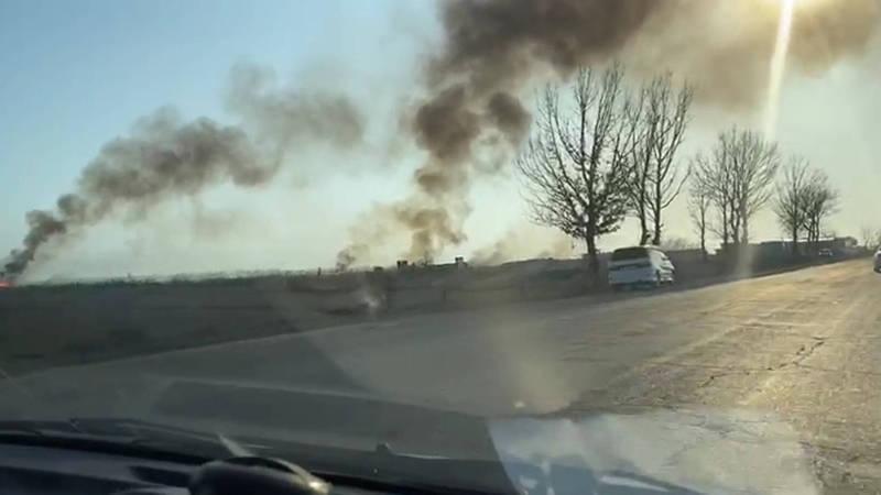 На камышовом поле близ Маевки произошел пожар. Видео