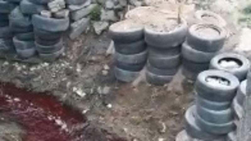 В Нижней Ала-Арче в арыке течет кроваво-красная вода, - местный житель. Видео