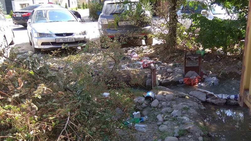 На ул. Исанова возле железной дороги разбросан мусор (фото)