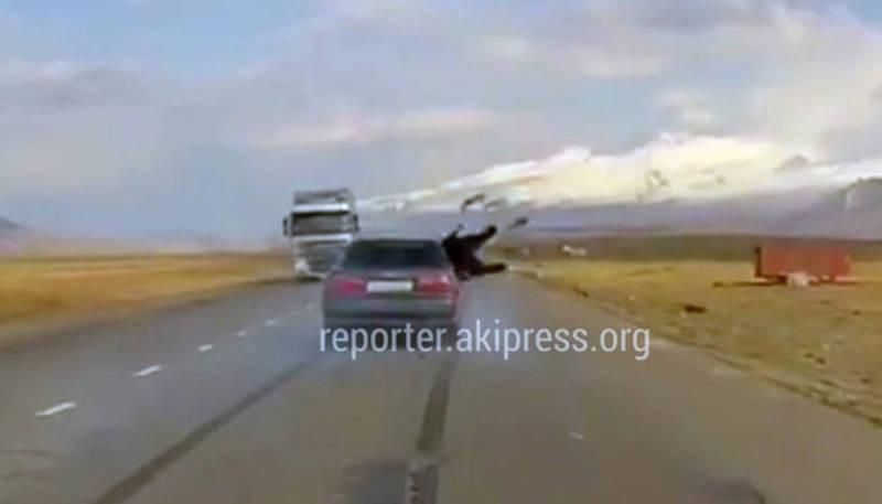 В Суусамыре водитель «Хонды» сбил корову (видео)