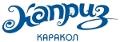 <p>Бишкеское представительство горнолыжного отеля</p>