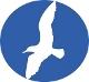 <p>молодежная правозащитная группа, некоммерческая неправительственная организация, защита и продвижение прав человека</p>