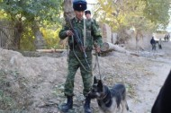 Trained dogs have become reliable assistants for border officers at the border checkpoint of Kyzyl-Bel, outposts Chekilik in Kadamjay district and Kara-Bak in Batken district.