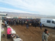 Breeders of Talas region in Kyrgyzstan mainly sell their cattle at a cattle market in the town of Talas.