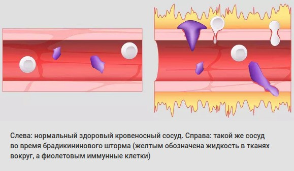 Исследование Оак-Раджинской лаборатории