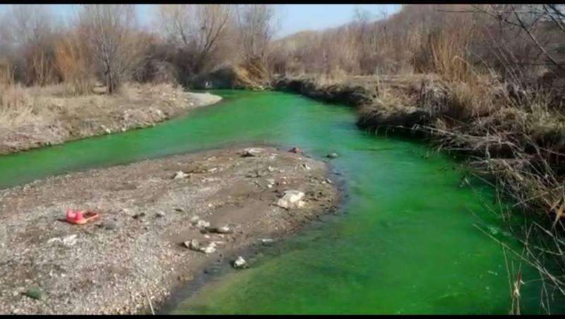Видео — Очевидец заявил, что вода в реке Аламедин окрасилась в ярко-зеленый цвет. Мэрия утверждает, что это фейк