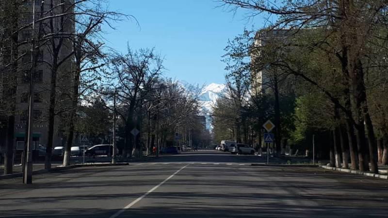 Как выглядит Бишкек на следующий день после апрельского снега? Фото