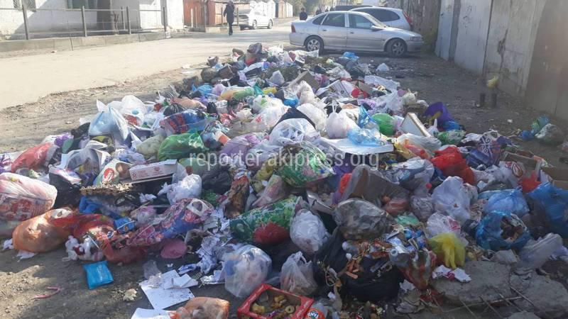 В Оше на улице Карасуйской не вывозят мусор