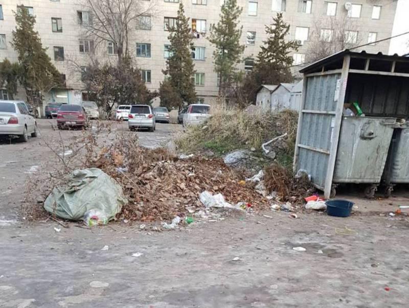 На Акиева-Тимирязева возле мусорных баков давно лежат сухие ветки