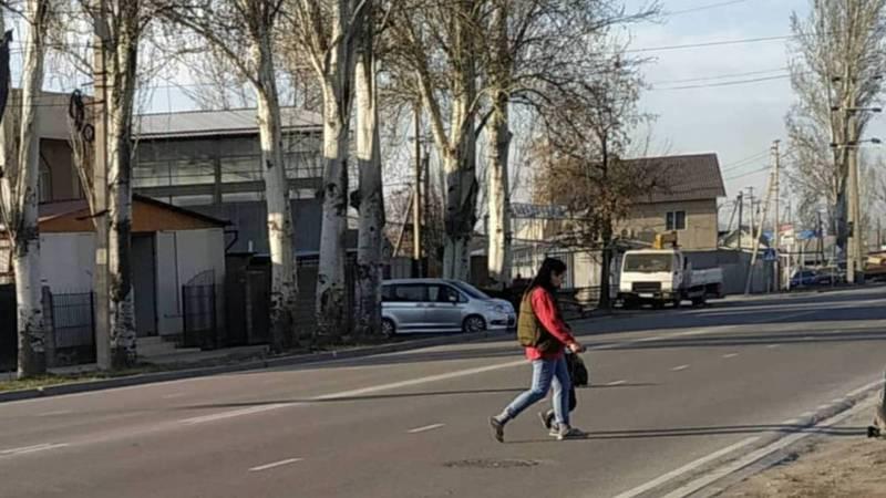 На ул.Тоголок Молдо возле школы №18 нет знака и разметки пешеходного перехода. Фото