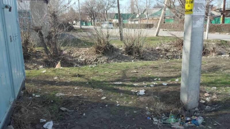 Территория на пересечении улиц Труда и Луговой в Кара-Балте завалена мусором, - жительница