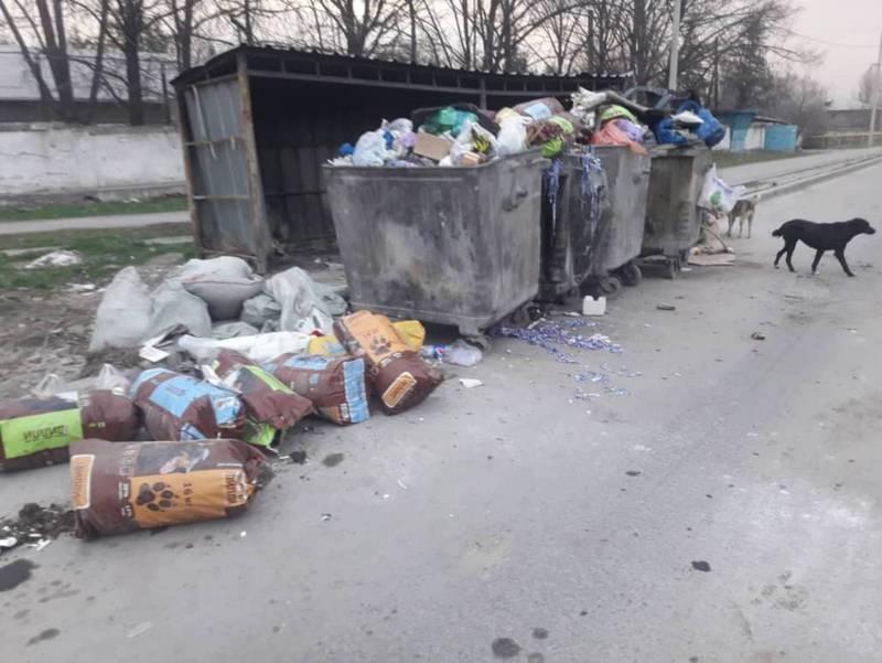 В Газгородке на трех улицах не вывозят мусор (фото)