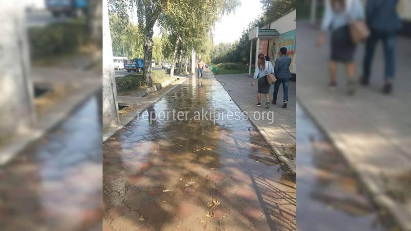 Тротуар улицы Байтик Баатыра затопило арычной водой