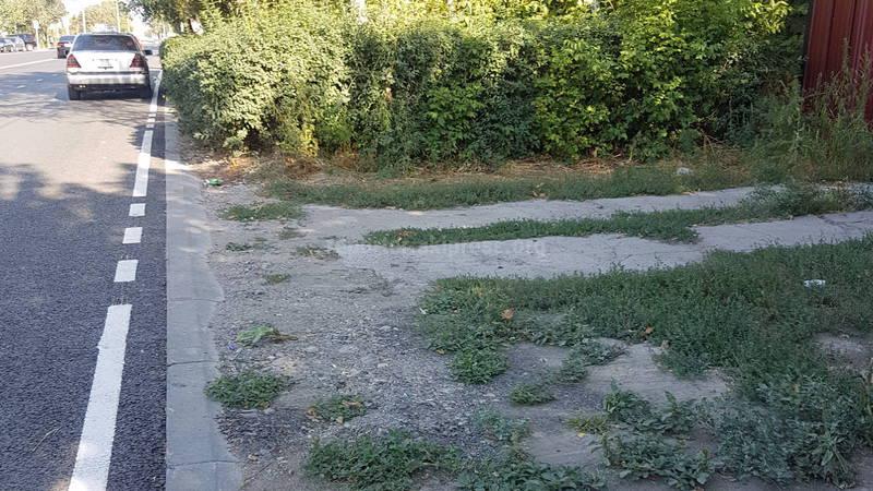 Житель Лебединовки просит сделать тротуар на улице Ленина (фото)