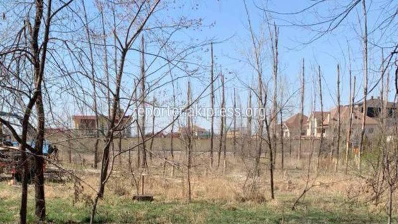 На Ч.Айтматова-Ы.Абдрахманова на данном участке планируется обустройство нового сквера, - мэрия