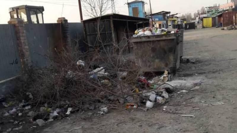 На улице Садыгалиева не вывозят мусор. Фото